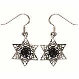 Silver Earrings / Star of David