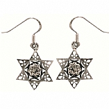 Silver Earrings / Star of David with Zircon