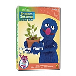 Shalom Sesame Grover Plants a Tree DVD